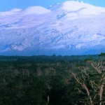 Mauna Kea Snow